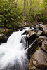 One of the many beautiful waterfalls along the Middle Prong of the Little River. Great Smoky Mountains National Park, TN<br /> <br /> TN-120413-0362