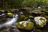 Boulders along Sam's Creek. Great Smoky Mountains National Park, TN<br /> <br /> TN-120414-0090