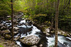 Bend of the Middle Prong of the Little River. Great Smoky Mountains National Park, TN<br /> <br /> TN-120414-0046