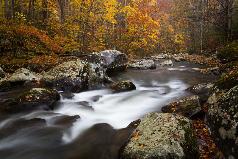 Boulders and Autumn