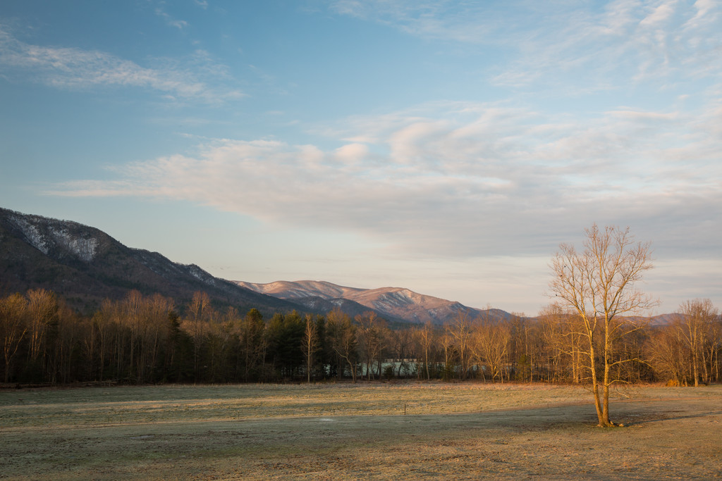 Cades Cove Valley Morning