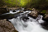 One of the many waterfalls along the Middle Prong of the Little River. Great Smoky Mountains National Park, TN<br /> <br /> TN-120414-0029