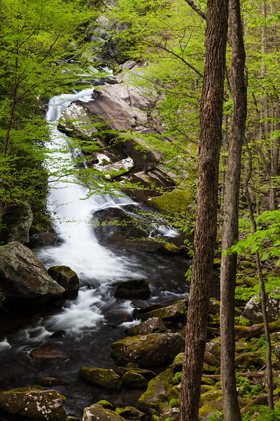 One of the many beautiful waterfalls along the Middle Prong of the Little River. Great Smoky Mountains National Park, TN<br /> <br /> TN-120413-0375