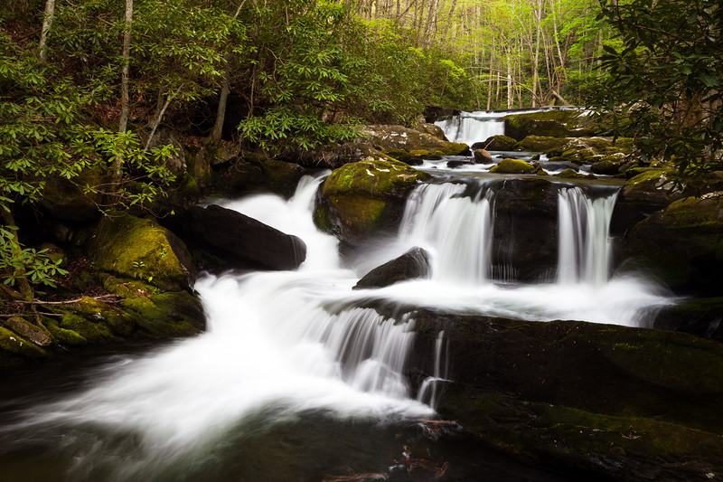 One of the many beautiful waterfalls along the Middle Prong of the Little River. Great Smoky Mountains National Park, TN<br /> <br /> TN-120413-0322