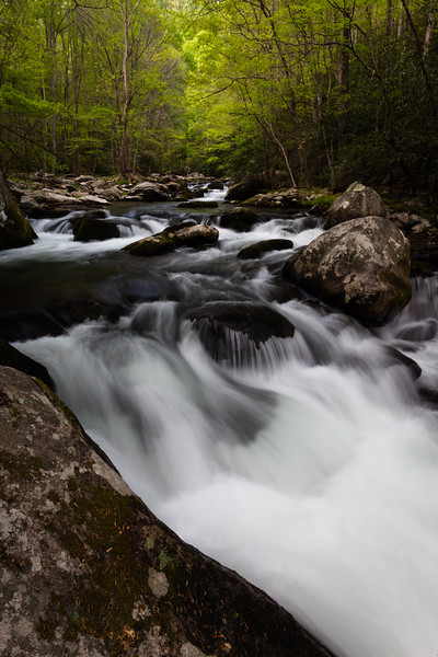 One of the many waterfalls along the Middle Prong of the Little River. Great Smoky Mountains National Park, TN<br /> <br /> TN-120414-0032