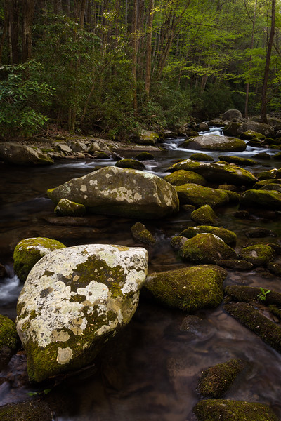 Boulders along Sam's Creek. Great Smoky Mountains National Park, TN<br /> <br /> TN-120414-0075
