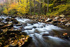 Laurel Creek Autumn