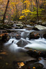 The Middle Prong of the Little River flows throught the autumn painted woods in the Smoky Mountains. TN<br /> <br /> TN-141031-0346