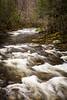Tremont Rapids