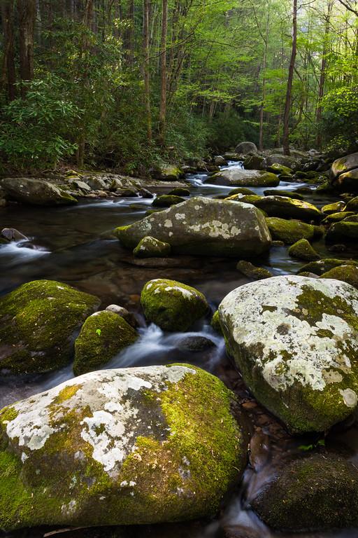 Boulders along Sam's Creek. Great Smoky Mountains National Park, TN<br /> <br /> TN-120414-0086
