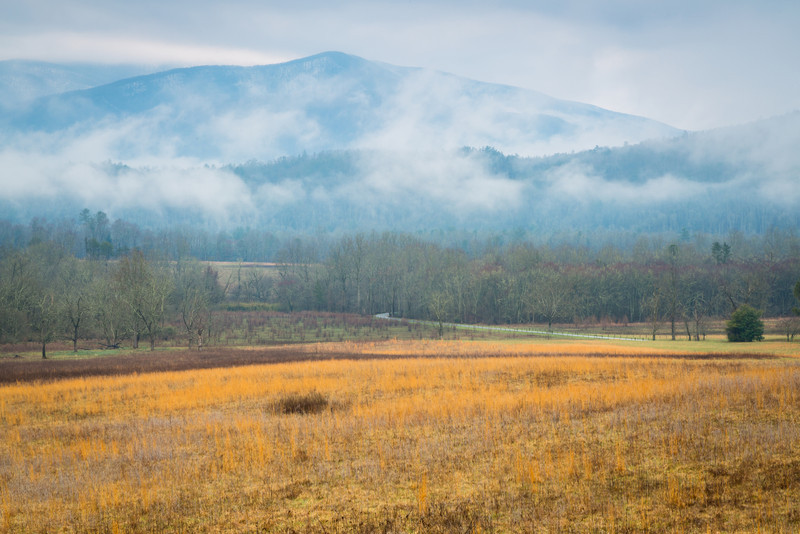 Cades Cove Morning Scene