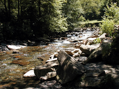 101   Great Smoky Mountains 2003