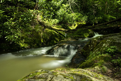 A small cascading waterfall at Rocky Fork State Park in Flag Pond, TN on Saturday, June 13, 2015. Copyright 2015 Jason Barnette