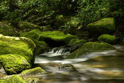 Water rushes across smooth, moss-covered rocks at Rocky Fork State Park in Flag Pond, TN on Saturday, June 13, 2015. Copyright 2015 Jason Barnette