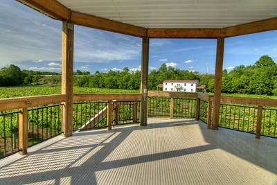 The view from the second story of the gazebo at Nolichucky Vineyard in Russellville, TN on Friday, June 6, 2014. Copyright 2014 Jason Barnette