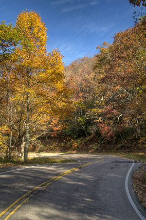 Beautiful fall colors along Highway 421 in Shady Valley, TN on Monday, October 20, 2014. Copyright 2014 Jason Barnette
