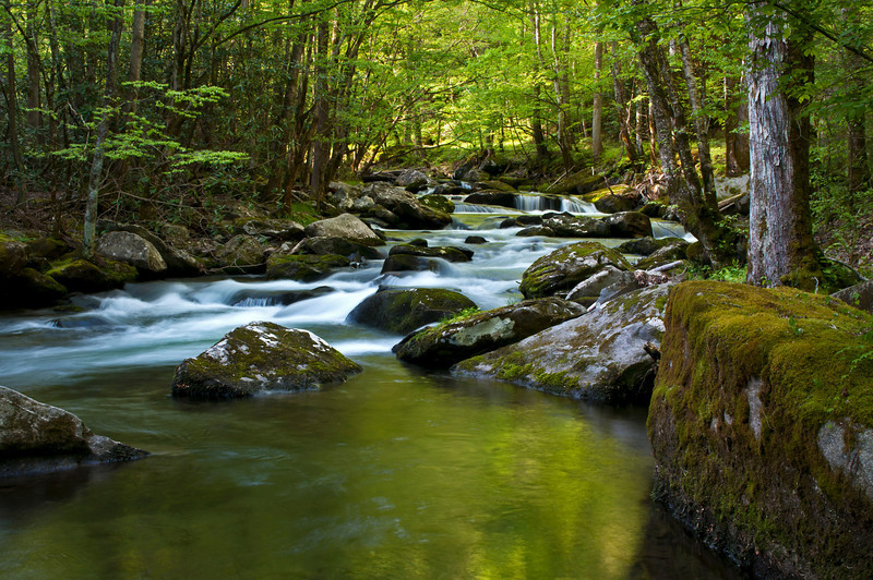 GSM 005                  <br /> Morning light on the Middle Prong of the Little River, Great Smoky Mountains National Park, Tennessee.