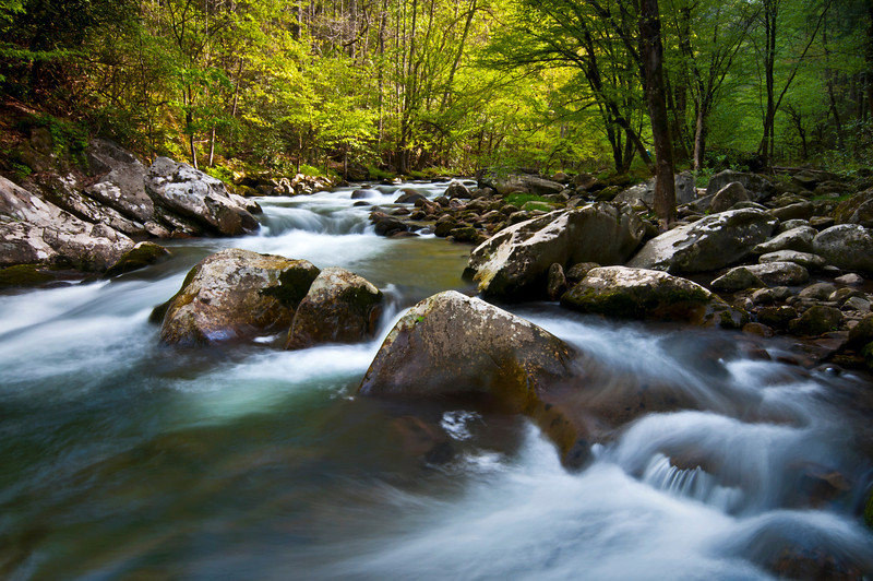 GSM 009                      <br /> Morning light on the Middle Prong of the Little River, Great Smoky Mountains National Park, Tennessee.