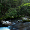GSM 039                        <br /> Early morning on the Middle Prong of the Little River, Smoky Mountains National Park, Tennessee.