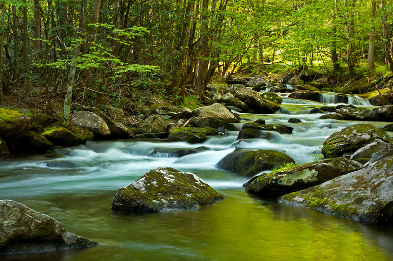 GSM 006                       <br /> Morning light on the Middle Prong of the Little River, Great Smoky Mountains National Park, Tennessee.