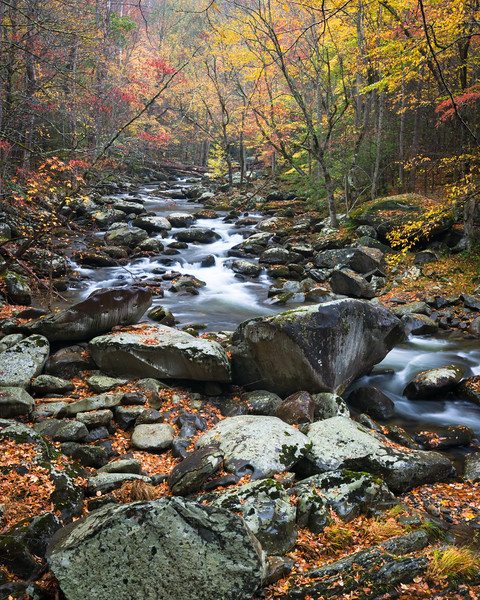 GSM 060<br /> <br /> Autumn on the Middle Prong of the Little River in Great Smoky Mountains National Park.