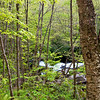 GSM 042                         <br />  The Middle Prong of the Little River winds it's way through Smoky Mountains National Park near Townsend, Tennessee.