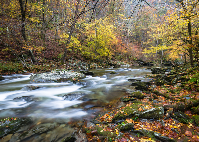 GSM 067<br /> <br /> The Middle Prong of the Little River flows through a pristine autumn landscape in Great Smoky Mountains National Park, Tennessee, USA.