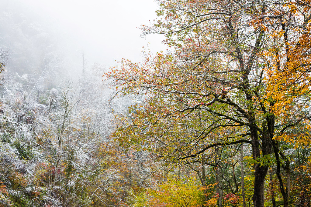 An early autumn snowfall blankets the Appalachian Mountains in Great Smoky Mountains National Park, Tennessee.