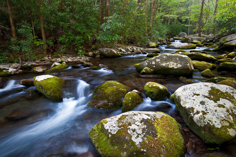 GSM 028                          <br /> Huge boulders litter the streambed of Sam's Creek, Great Smoky Mountains National Park, Tennessee.