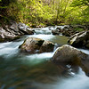 GSM 010                       <br /> Morning light on the Middle Prong of the Little River, Great Smoky Mountains National Park, Tennessee.