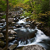 GSM 017                          <br /> Morning light on the Middle Prong of the Little River, Great Smoky Mountains National Park, Tennessee.
