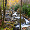GSM 056    <br /> Autumn on the Middle Prong of the Little River in the Appalachian Mountains, Great Smoky Mountains National Park, Tennessee.