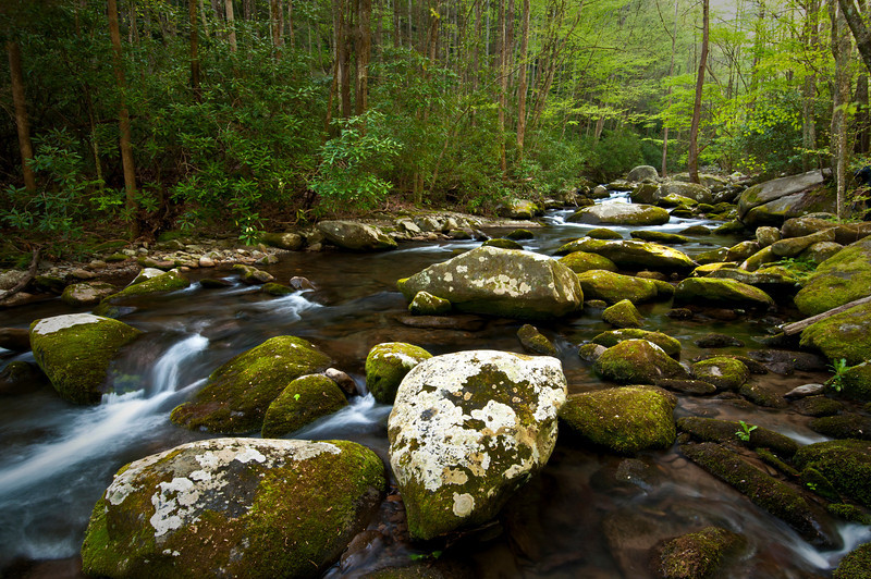 GSM 026                         <br /> Huge boulders litter the streambed of Sam's Creek, Great Smoky Mountains National Park, Tennessee.