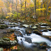 GSM 054    <br /> Autumn on the Middle Prong of the Little River in the Appalachian Mountains, Great Smoky Mountains National Park, Tennessee.