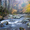 GSM 049         <br /> Autumn color along the Little River in Great Smoky Mountains National Park, Tennessee.