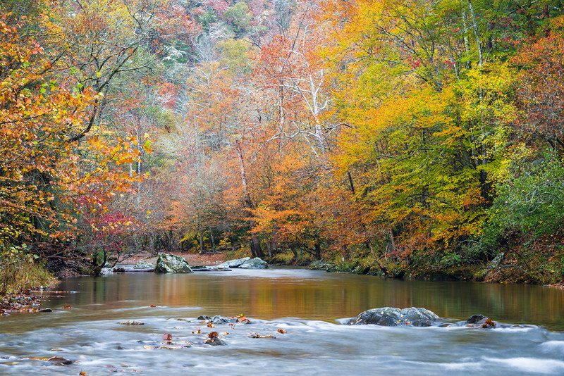 GSM 051<br /> Traces of snow can be seen in the trees above the Little River after an early snow in Great Smoky Mountains National Park, Tennessee.