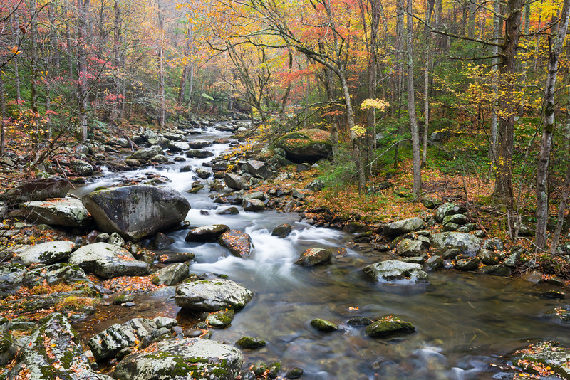 GSM 055    <br /> Autumn on the Middle Prong of the Little River in the Appalachian Mountains, Great Smoky Mountains National Park, Tennessee.
