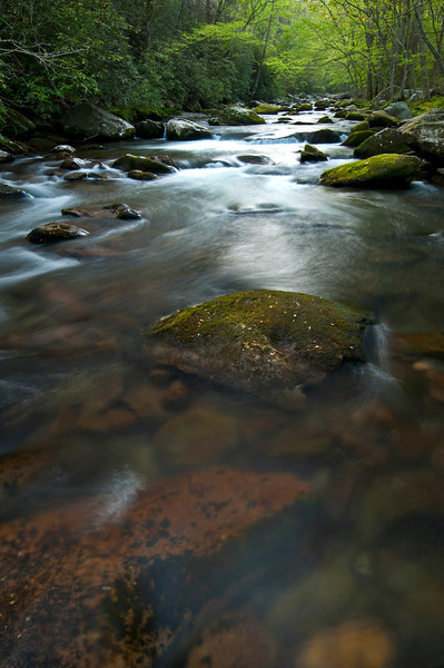 GSM 038                           <br /> Morning light on the Little River, Great Smoky Mountains National Park, Tennessee.