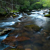 GSM 036                           <br /> Morning light on the Little River, Great Smoky Mountains National Park, Tennessee.