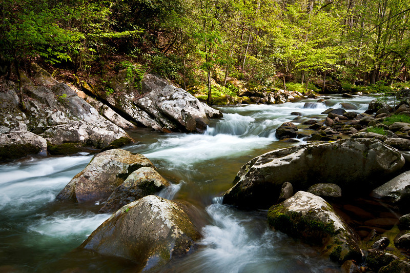 GSM 013                          <br /> Morning light on the Middle Prong of the Little River, Great Smoky Mountains National Park, Tennessee.