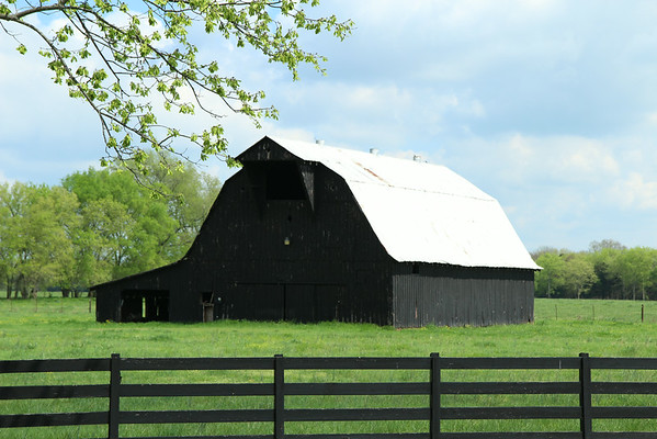 One of the many barns along Highway 41 in Tennessee.