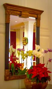 Poinsettia Reflection in Mirror