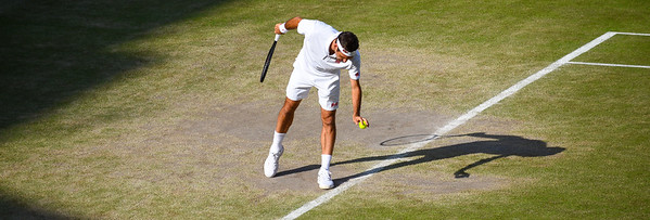 Wimbledon Mens Semi final 2019