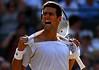 Novak Djokovic, Wimbledon, 2010