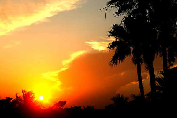 Sunset, Miami, 2011