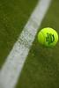 Wimbledon detail, 2010