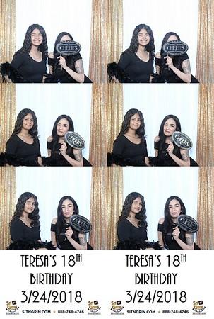 Teresa's 18th birthday party