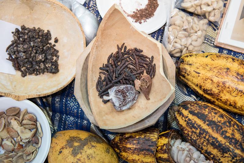 Biodiversità dell' Africa
