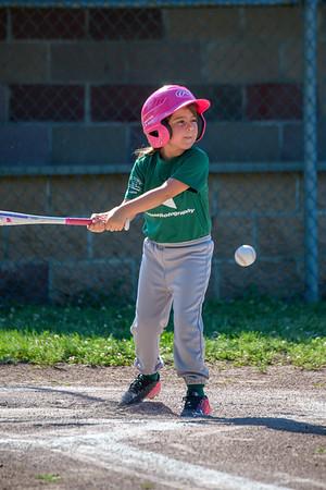 Terre Town Baseball