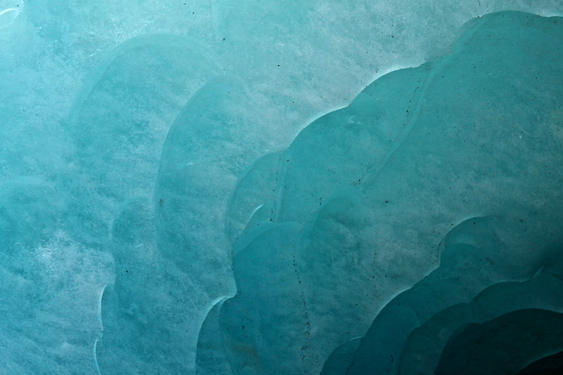 Sous la mer glacée